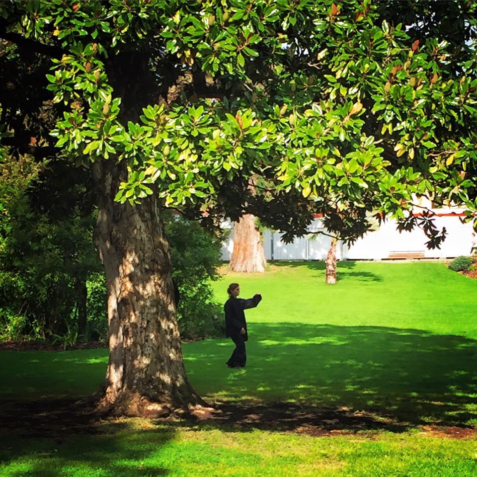 france-chervoillot-taichichuan-jardin-public-bordeaux