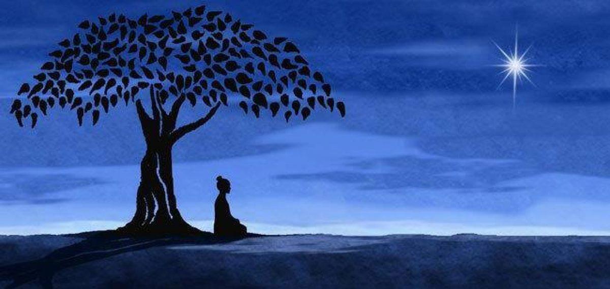Qi Gong / Méditation / Ateliers Corporels  / Yoga Intégral